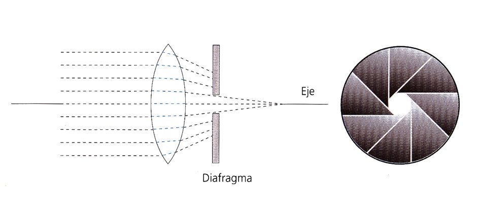 El diafragma, definición y uso. | Novafoto Sur